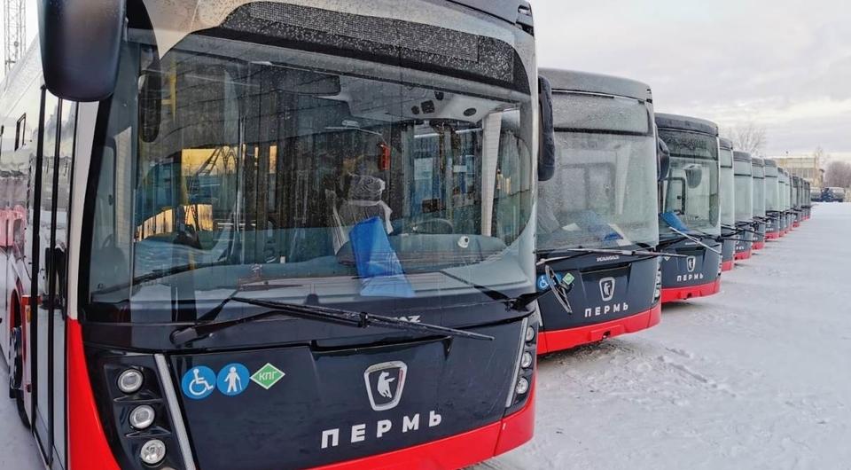 Нефтекамские газовые автобусы для Перми
